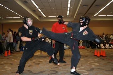 Learning to Spar for the tournament